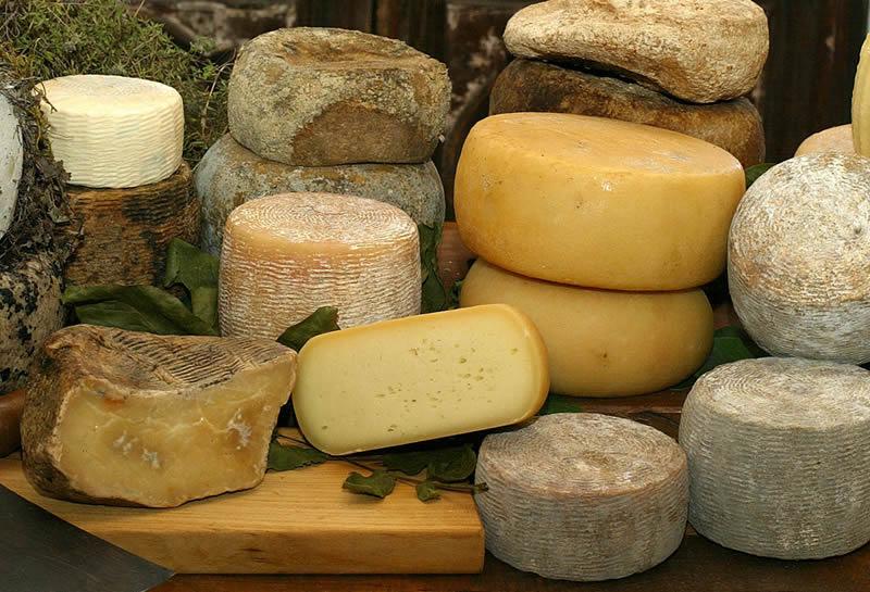 I formaggi stagionati possono essere degustati con una buona malvasia bianca di candia dei colli piacentini