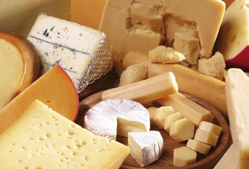 Vari formaggi sia freschi che stagionati trovano un ottimo accostamento con il vino bonarda
